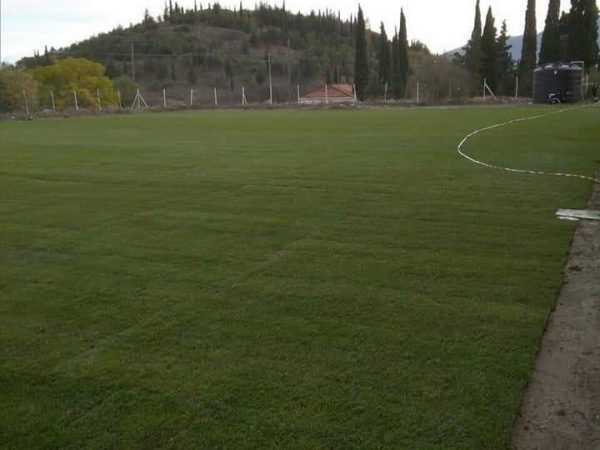 βοηθητικό γήπεδο Γόννων (2)